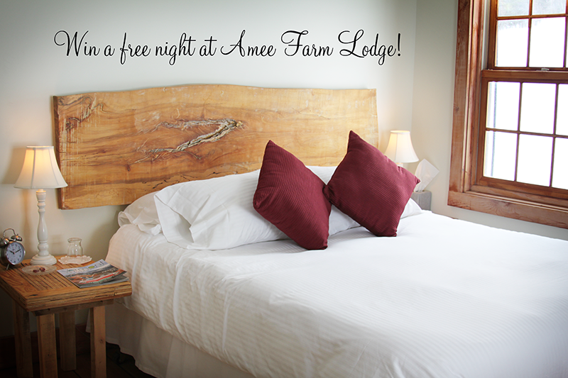 Win a FREE night at Amee Farm Lodge!