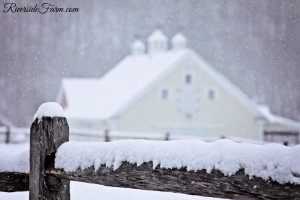 VermontWeddingWInter-4864