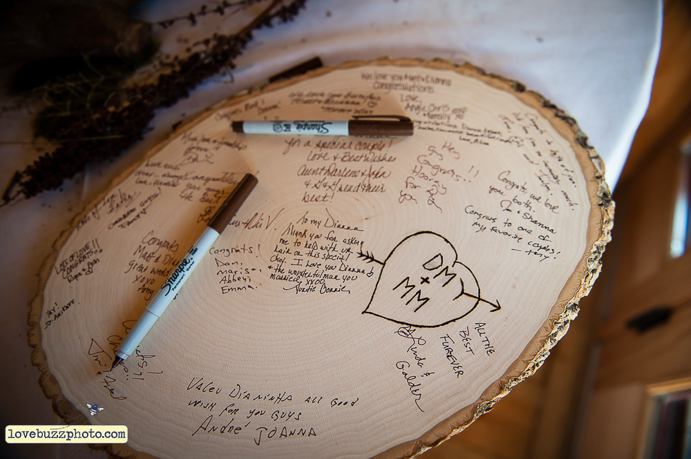 Guest book made from a birch log