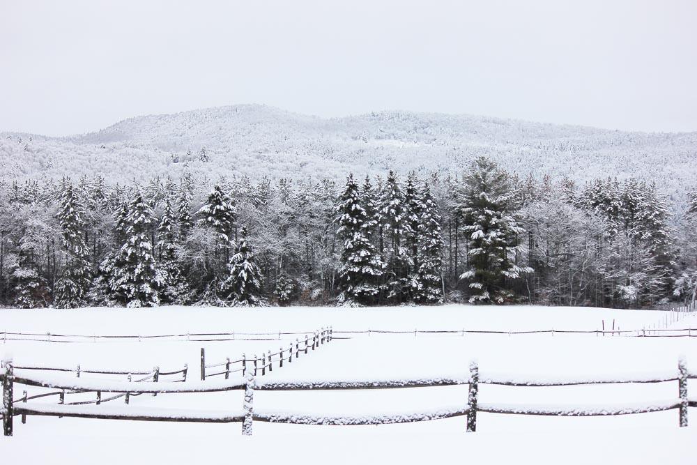 Snowy Meadow at Riverside Farm Weddings