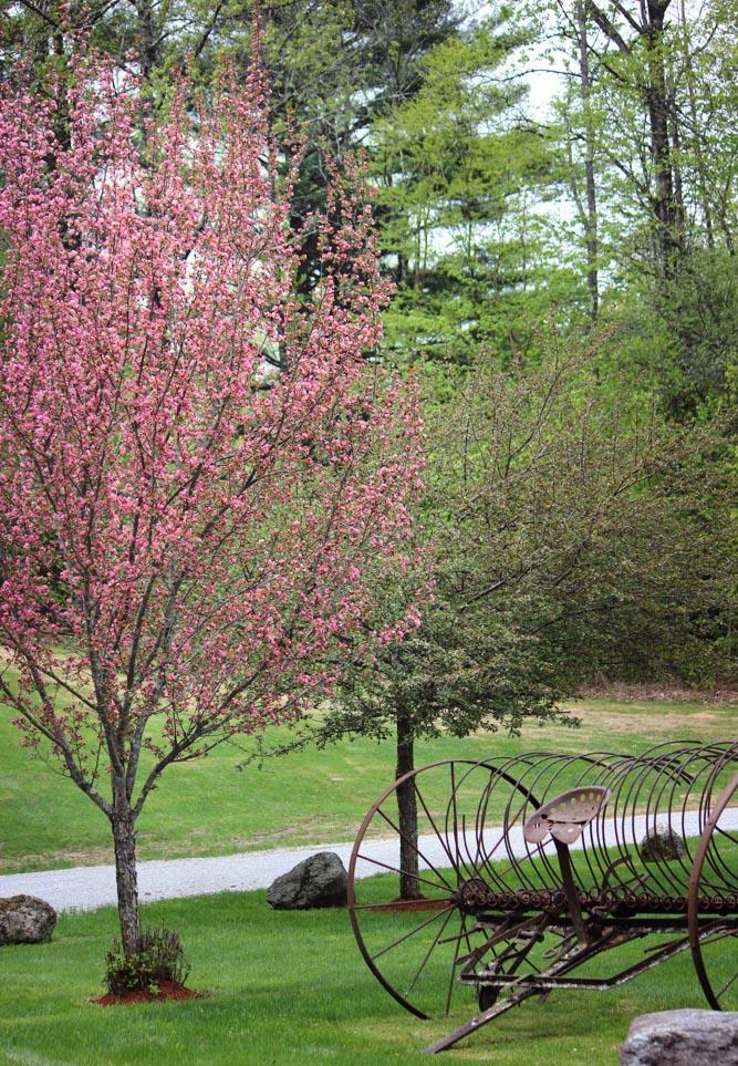 Riverside_Farm_Spring_2015-4