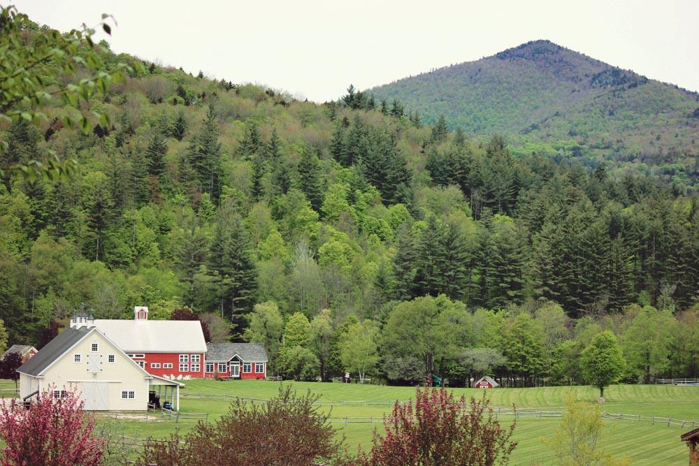 Riverside_Farm_Spring_2015-6