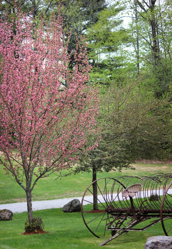 Riverside_Farm_Spring_2015-4
